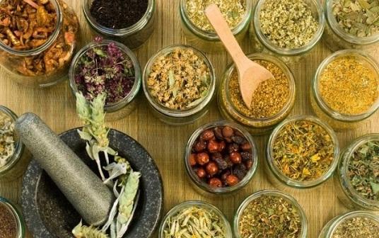 Plantas medicinales para la digestión